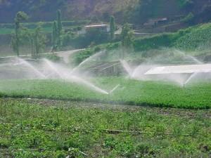 CONAGUA busca introducir una cultura empresarial de riego en la agricultura